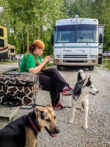 RV with dogs