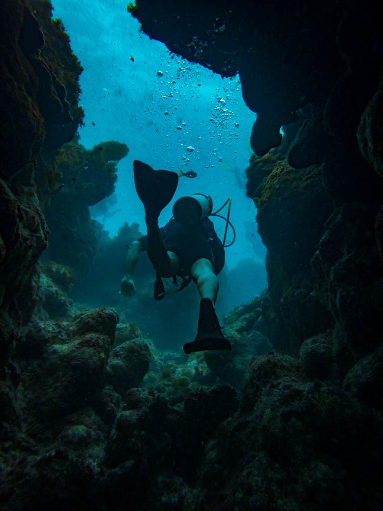 Atlantic Reef Dive