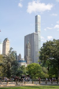 Looking East at skyscrapers above Central Park Trees
