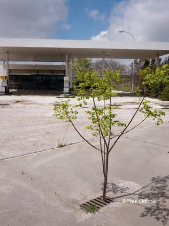 Disused petrol station, Conil, Spain