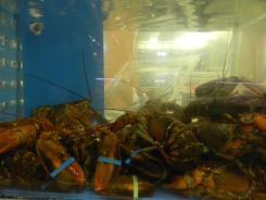 st-lawrence-market-e-um-dos-melhores-lugares-de-toronto-para-a-compra-de-lagostas