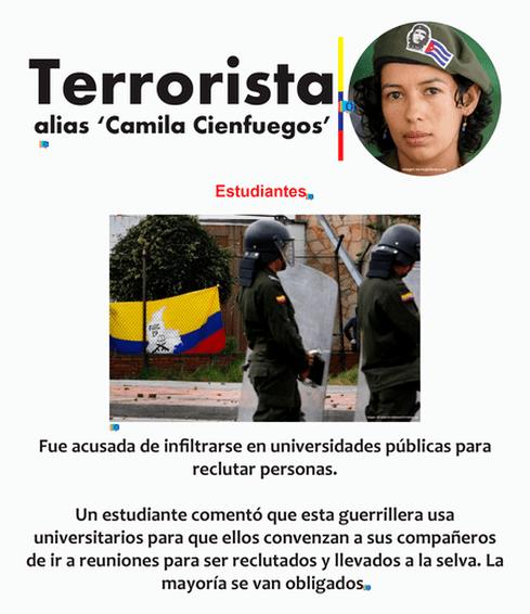 camila31.png