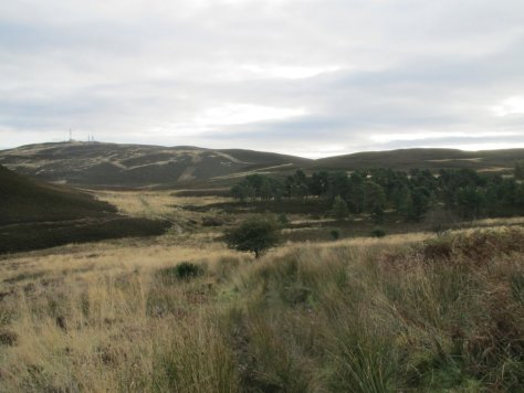 Craigowl above the head of Denoon Glen