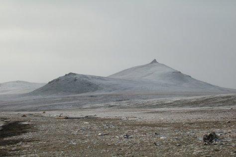Dragi Bay 2, Wrangel Island