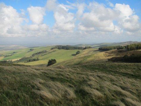Castleward from Kinpurney Hill