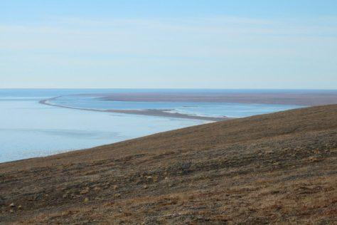 Krasin Bay, Wrangel Island