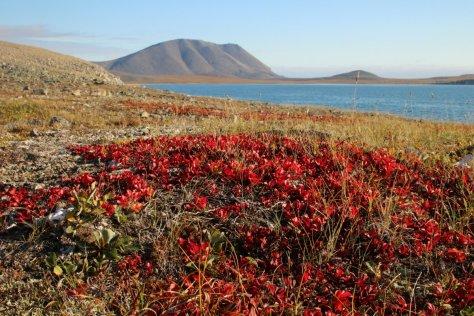 Autumn, Preobrazheniya Bay