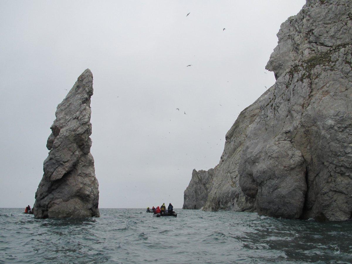 russian far east part 2 u2013 wrangel island the oikofuge