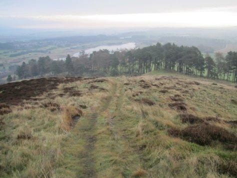 Piperdam Loch from Blacklaw Hill