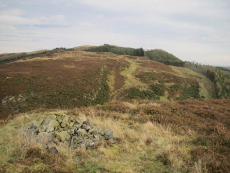 Lintrose Hill from Buttergask Hill