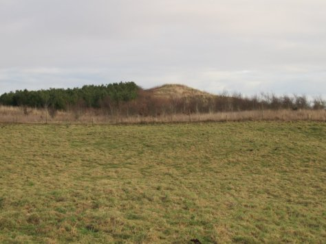 Balshando Hill from Whinny Knowe