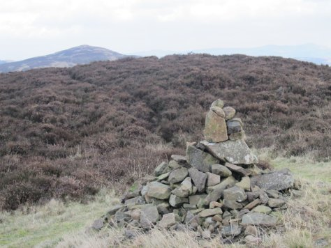 King's Seat from Black Hill