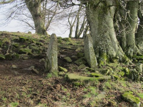 Old gateposts, Smithton Knowe