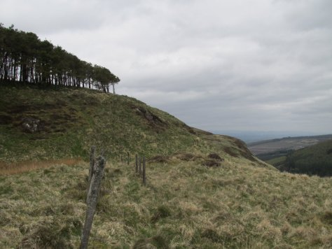 Summit of Gask Hill