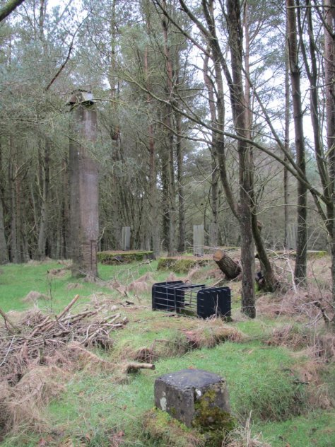 Remains of radar installation, Gallow Hill