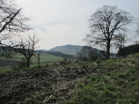 King's Seat from Gallows Knowe