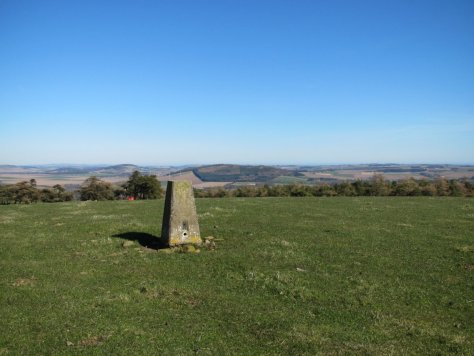 Summit of Kincaldrum Hill, Fothringham Hill in the distance