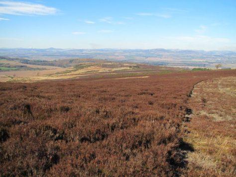 The ridge of Hayston Hill