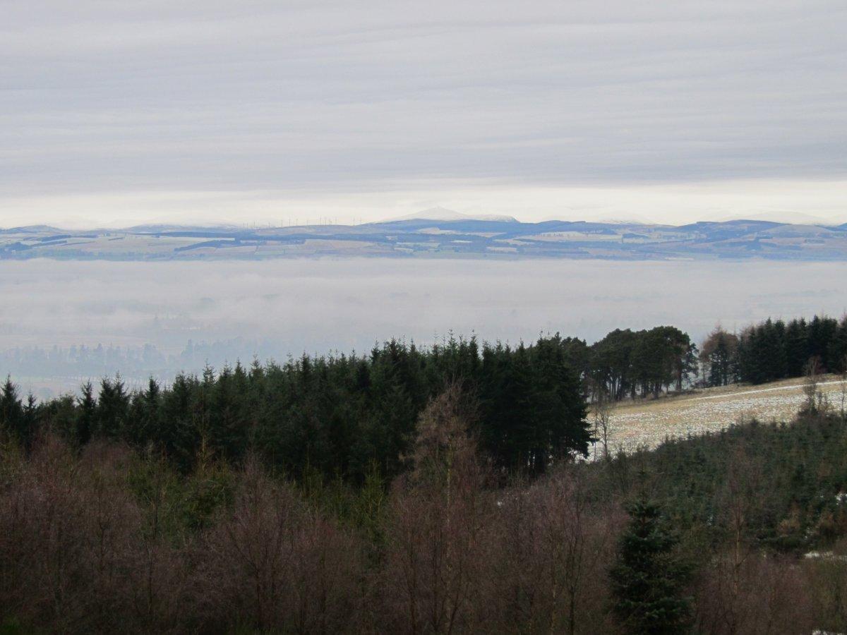 Radiation Fog | The Oikofuge