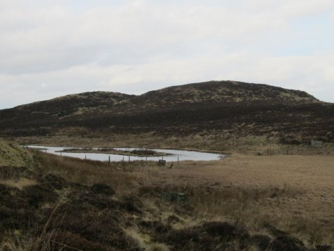 Little Dunsinane Hill