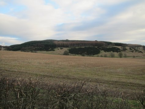 White Hill from the west
