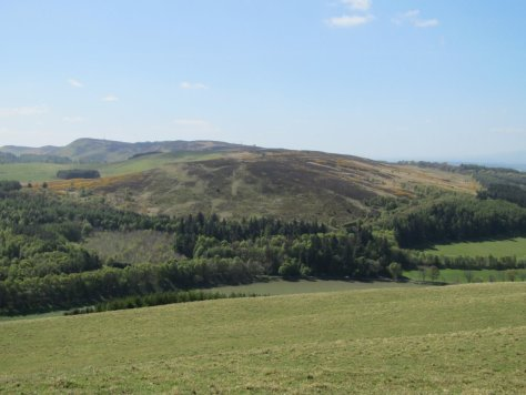 Newtyle Hill across Glack of Newtyle from Hatton Hill