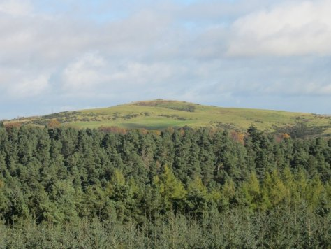 Murrayshall Hill from Deuchny Hill