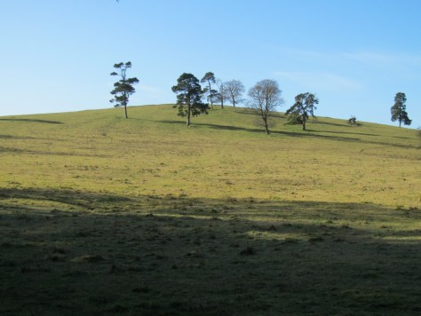 Dron Hill from the east