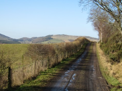 Redmyre track, looking towards Gask Hill