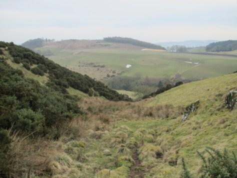 Stream leading off Pole Hill to Pitroddie Burn