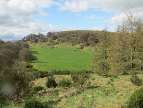 Glencarse Hill from the east
