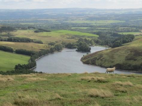 Glencorse Reservoir from Bell's Hill