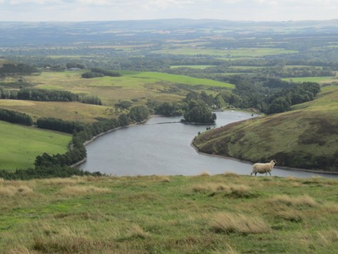 Glencorse Reservoir from Bell's Hill