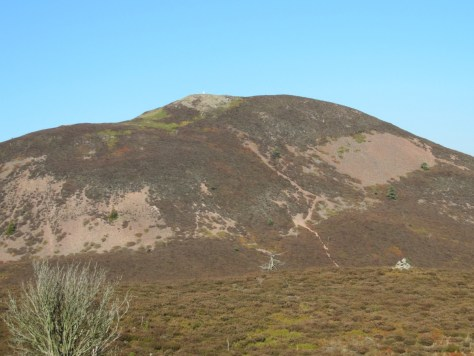 Eildon Mid Hill from Eildon Wester Hill