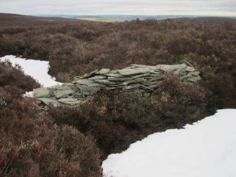 Drystone shelter in hollow, Gallow Hill