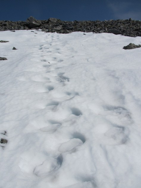 Footprints in snow, Carn a' Gheoidh