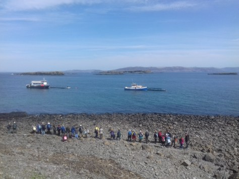 Queuing to leave Lunga