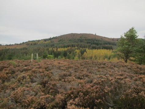 Millstone Hill from Scare Hill