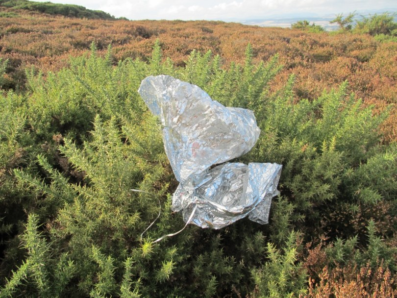 Helium balloon envelope on Newtyle Hill