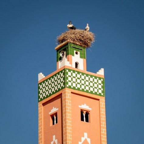 Stork Nest, Ouarzazate