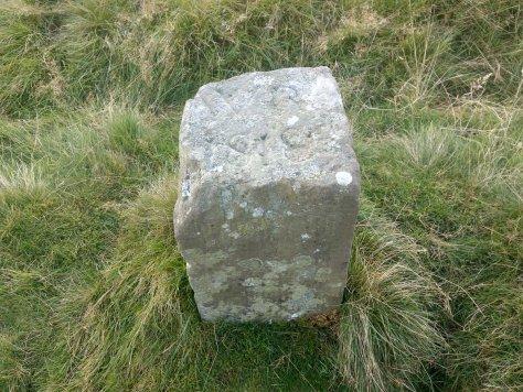 Commonty division marker, Lomond Hills