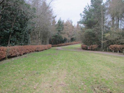 Green Circular Route, Dundee Technology Park