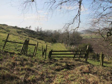 Ruined fence below Craig Hill