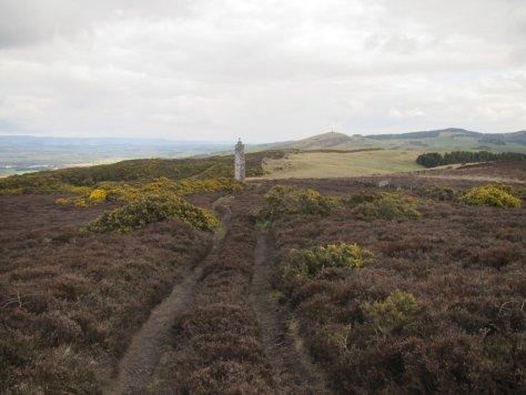 Mackenzie Meridian and Kinpurney Hill
