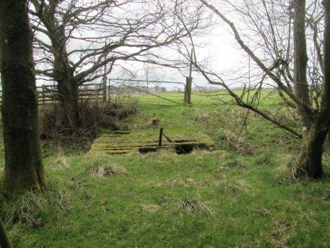 Broken bridge over Neuk Burn near Thriepley