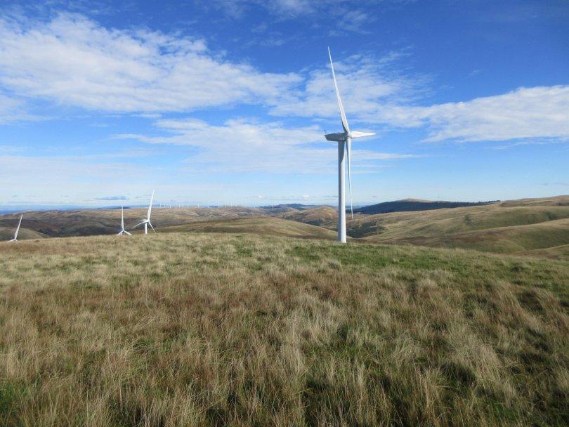 Summit of Ben Buck NE Top, in the middle of Burnfoot Hill Wind Farm