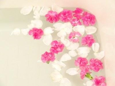 ローズヒップオイルの特徴と美肌効果