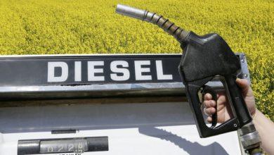 Photo of ECB Group planea invertir 800 mdd en Paraguay para producción de Diesel