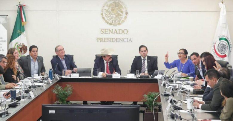 Comisión de Energía del Senado aprueba idoneidad para ocupar presidencia de la CRE 1