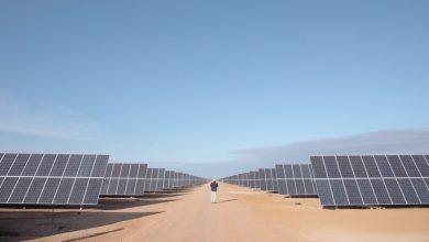 Photo of LONGi fortalece su presencia en México con planta de energía fotovoltaica Pachamama de 191 MW